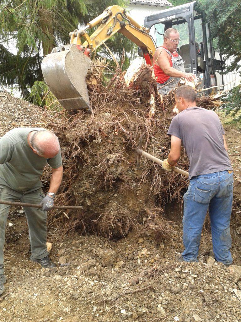 Unser Team bei einer Baumfällung
